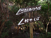 photo_047.jpg
