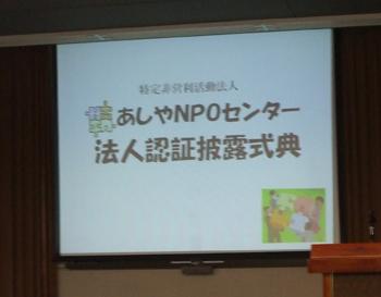photo_191.jpg